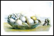 <h5>Domenico Purificato - Natura morta</h5><p>Litografia a 4 colori, 54/99, cm 50 x 70, 1983</p>